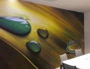 meeting-room-wall-graphics-on-vinyl