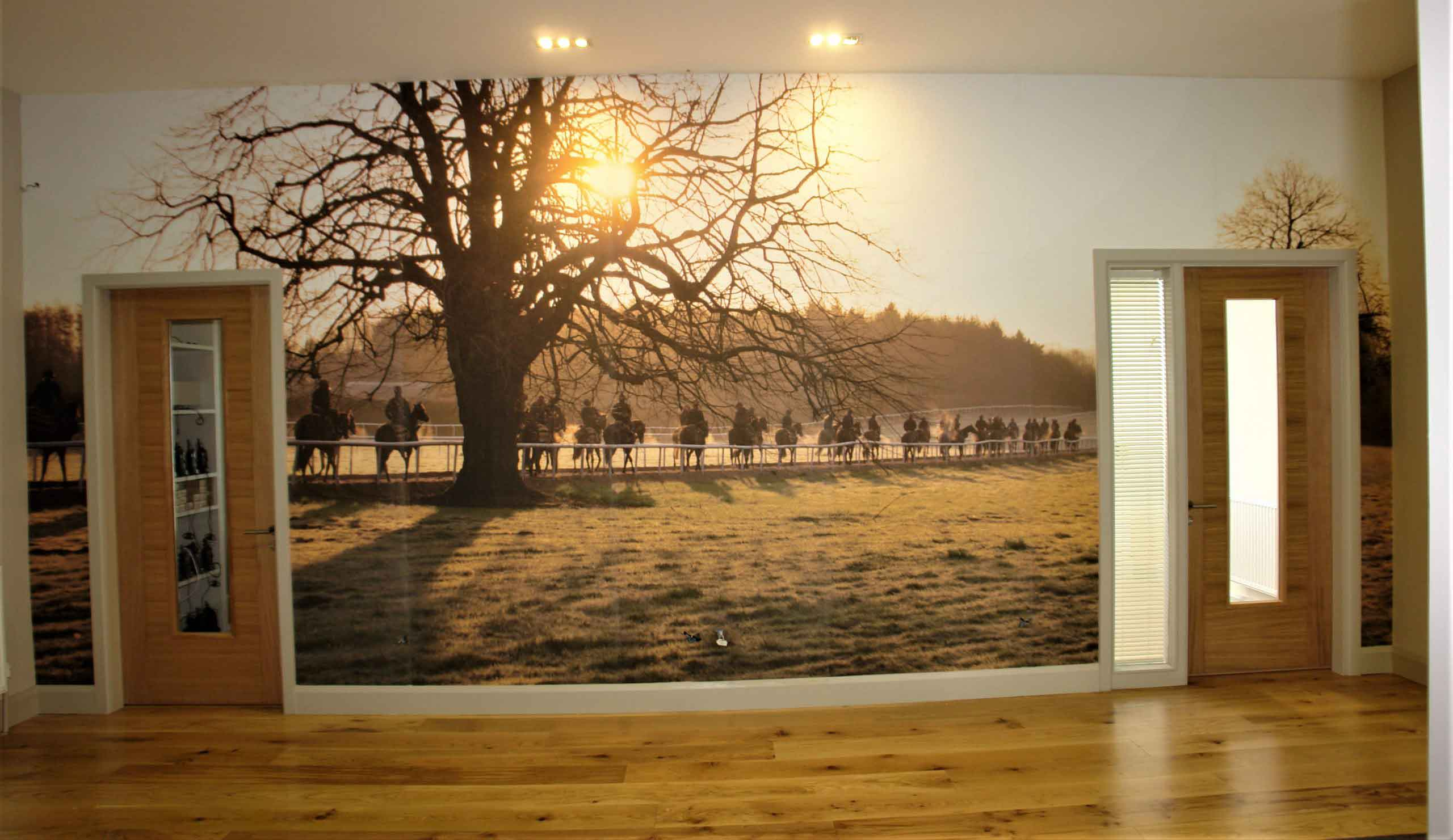 Coolmore Stud Office Wall Vinyl graphics